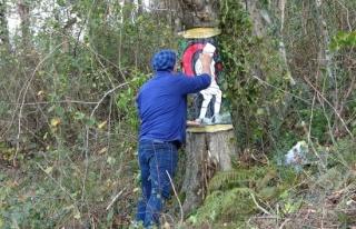 Ağaç üzerine çizdiği 3 boyutlu resimler dikkat...