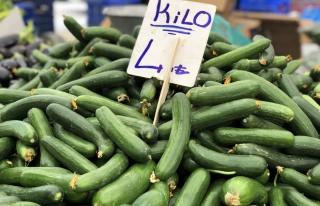 Ağustos'ta fiyatı en çok artan ürün olan salatalık...