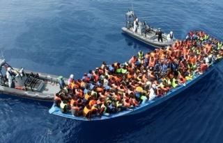 Almanya, göçmenlerin yüzde 25'ini almaya hazır