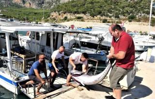 Antalyalı balıkçıların dev orkinos ile 4 saat...