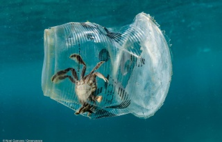 Araştırma: Avrupa'da Denizleri En Çok Kirleten...