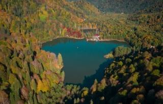 Artvin'de masalsı sonbahar manzaraları