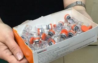 Avrupa İlaç Ajansı, Sinovac'ın Covid-19 aşısını...