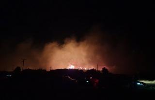 Ayvalık Şeytan Sofrası'nda Orman Yangını Çıktı:...