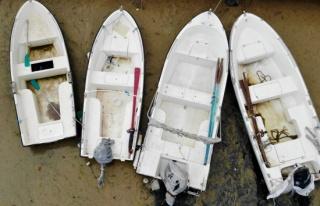 Balıkçıların korkulu rüyası İzmit Körfezi'ni...