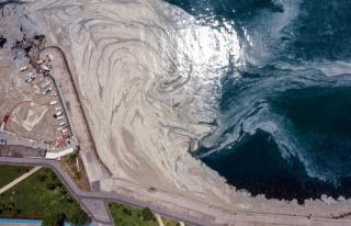 Bir Denizi Öldürdük: Müsilaj Hakkında Hangi Adımlar...