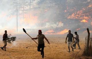 BM: İklim Krizinin Yol Açtığı Afetler Son 50...