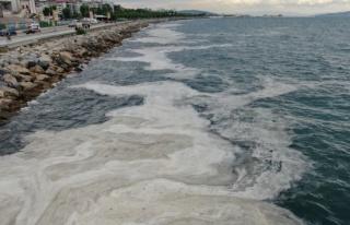 Bostancı Sahili'nde deniz salyası yoğunluğu...