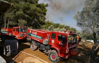 Bugün 14 Ayrı Bölgede Orman Yangını Çıktı:...