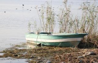 Çanlar Sapanca Gölü için çalıyor, su seviyesi...