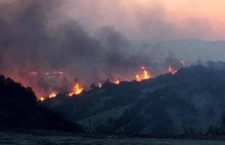 Canlı Blog | Denizli Buldan'daki Yangın Kontrol...