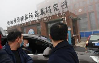 Çin'deki DSÖ Heyetinden Salgının Kökenine Dair...