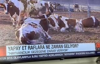 CNN Türk'ün 'Yapay Et' Yayınına Sosyal Medyadan...