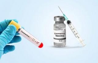 Corona virüsüne karşı aşı ne zaman bulunur?...
