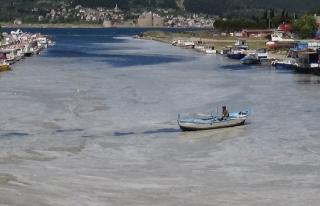 Deniz Salyası Yayılmaya Devam Ediyor: Çanakkale...