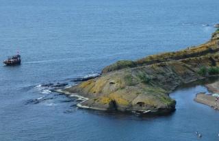 Doğal 'Timsah Adası' şaşırtıyor