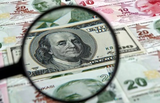 Dolar 7,24 ile Rekor Kırdı: TL'nin Değer Kaybı...