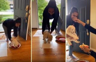 Eve Yeni Gelen Yavru Köpeği Geleneksel Yöntemlerle...