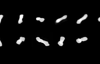 Ezber bozan bir asteroit keşfedildi