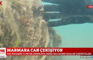 FOX Haber, Marmara Denizi'ndeki Deniz Salyasına Dalış...