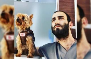 Hasta Köpeği Tedavi Etmeye Giden Veteriner, Trafik...