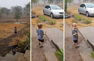Hayatında İlk Defa Yağmurla Tanışan Ufaklığın...