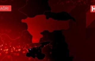 İçişleri: Ağrı'da 1 terörist etkisiz hale getirildi