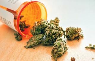 Kaliforniya'da Aşılama Tartışması: Tıbbi Esrar...
