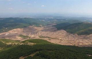 Kaz Dağları İçin Yapılacak Büyük Miting İptal...