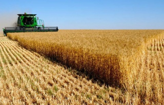 Kazakistan'da tarım arazilerinin yabancılara satılması...