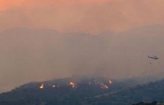 Kıbrıs Rum kesiminde devam eden yangında dört...