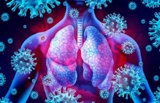Koronavirüs Vücudumuzu Nasıl Etkiliyor?