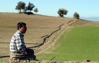 Kuraklıktan Etkilenen Çiftçiye 100 TL'lik Destek...