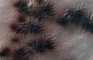 Mars'ın Gizemli Örümcekleri: Bilim İnsanları...