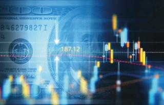 Merkez Bankası Eski Başekonomisti: 'Asıl Sorun...