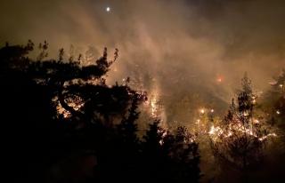 OSB'lerden yangın ve sel bölgelerine 206 milyon...