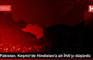 Pakistan, Keşmir'de Hindistan'a ait İHA'yı düşürdü