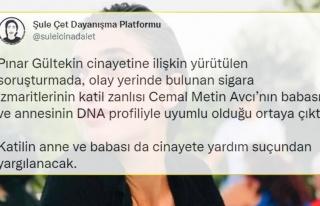Pınar Gültekin Cinayeti: Cemal Metin Avcı'nın...