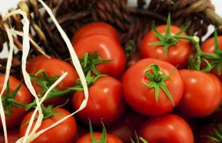 Rusya'ya domates ve biber ihracatındaki analiz...