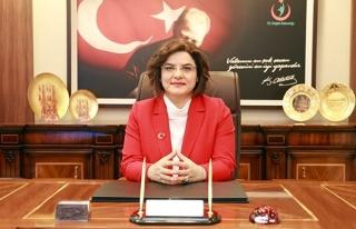 Sağlık Bakanı Yardımcısı Emine Alp Meşe Görevden...
