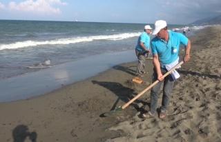 Samandağ Sahilinde petrol temizliği