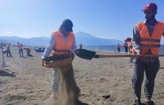 Samandağ sahilindeki atık petrol temizliği çalışmaları...