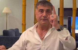 Sedat Peker'den Yeni Flood: 'Ali Tarakçı'ya Saldırıda...