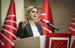 Selin Sayek Böke: Türkiye'nin Kaynaklarını Rantla...