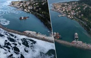 Sevindiren Haber! Marmara'nın Güney Sahillerinde...