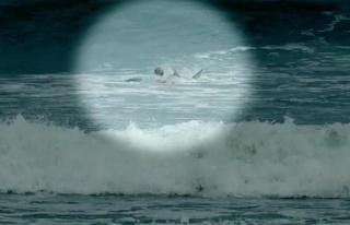 Sinsice yaklaşan köpek balığı, sörf yapan çocuğun...