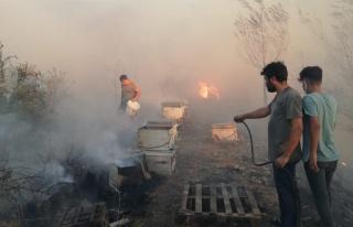 Son dakika gündem: Hatay'da çıkan bahçe yangını...