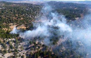 Son dakika haberleri: Bozyazı'da orman yangını