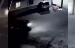 Sürücünün köpeği ezdiği anlar kamerada