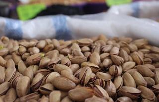 Tarım ürünleri ihracatında sert kabuklu meyveler...